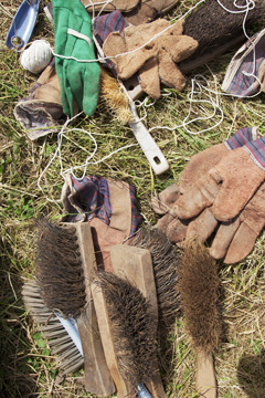 Gloves and brushes for fieldwork