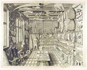 Famous cabinet of curiosities belonging to Ole Worm