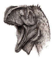 Artist's impression of the Kryptops dinosaur copyright Todd Marshall, courtesy of Project Exploration