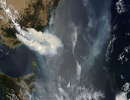 Smoke plumes from fires in Southeast Australia captured by satellite on January 11, 2007.