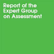 Department for Children, Schools and Families (DCSF) Expert Group Report