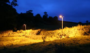 Lights were set up by the researchers along the bats' commuting routes