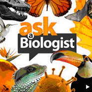 Ask a Biologist website