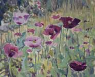 A painting of poppies by Susan Bracher
