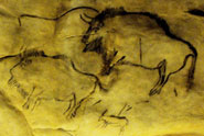 A cave painting of what appears to be bison struck with projectile weapons located at Grotte de Niaux, France