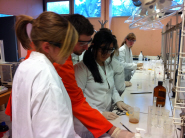 Students experience practical work as part of the ChemLabS outreach programme