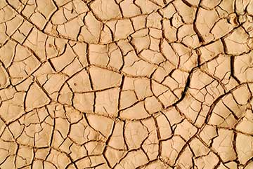 Image of some parched ground