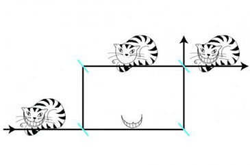 Diagram illustrating the quantum Cheshire Cat