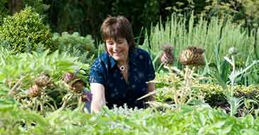 Jekka McVicar, new President of the Friends of the University of Bristol Botanic Garden