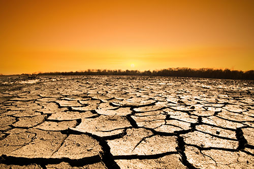 Image of parched ground