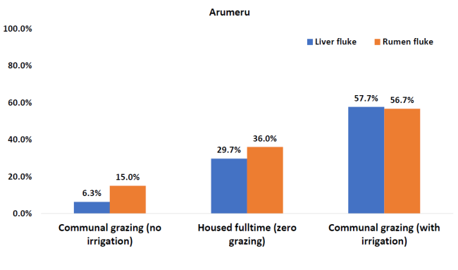 graph showing liver and rumen fluke prevalence in irrigated, non-irrigated and housed cattle management systems