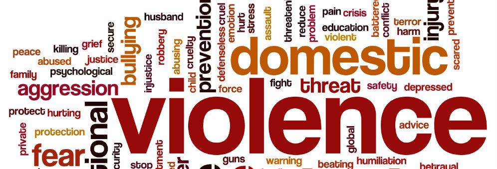 domestic violence case study