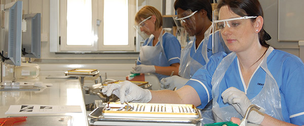 Online Degree and Diploma Programs to Be a Dental Hygienist